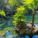 cenote-3-min